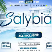 Salybia All Inclusive 2020