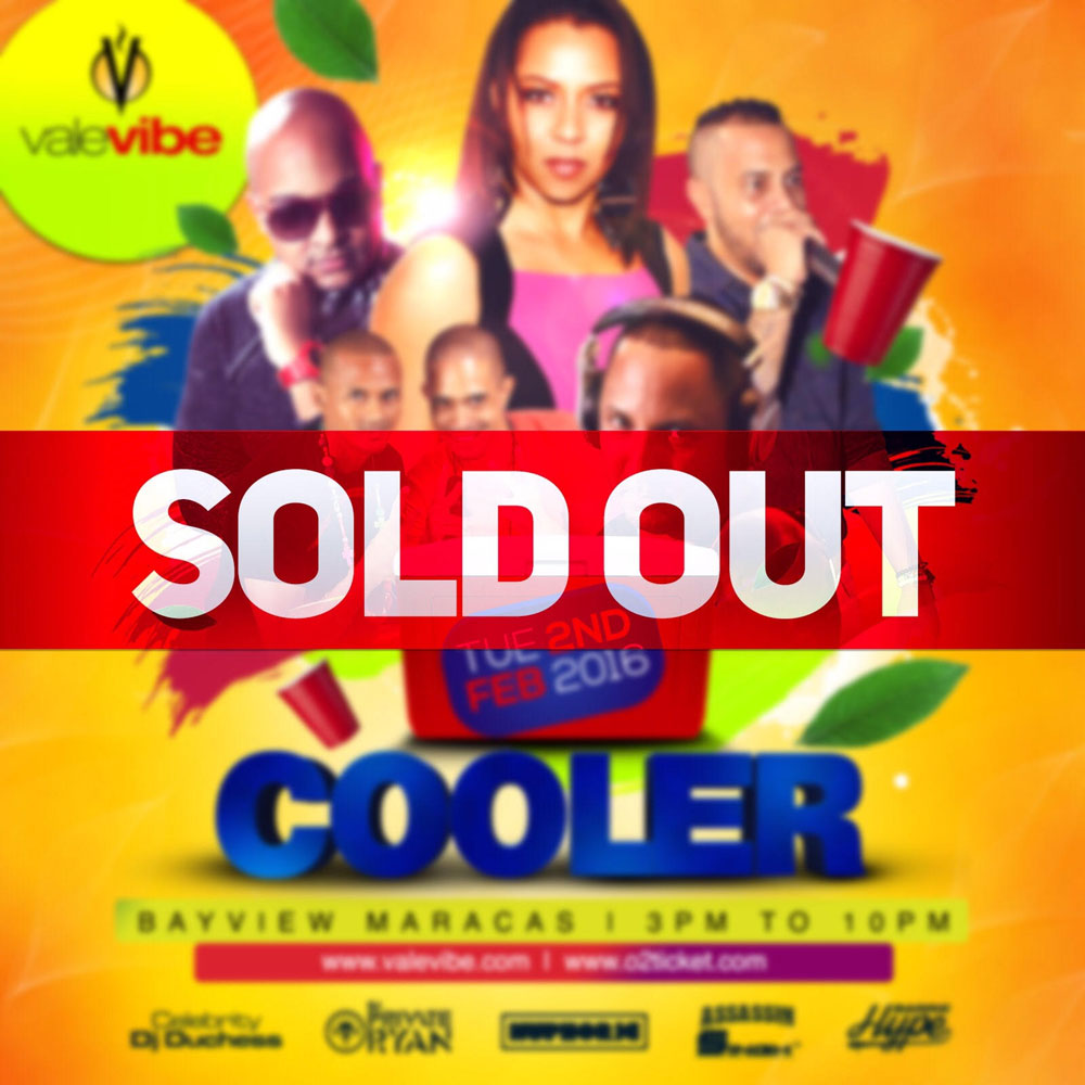 Vale Vibe Cooler