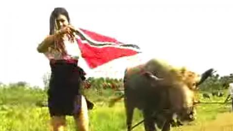 Nisha B - Bison (Official Music Video)